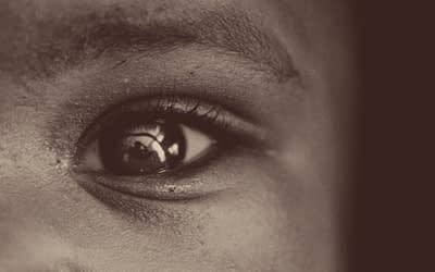 Sharp Eyes – By Sithis Yim Samnang