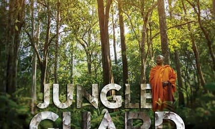 Jungle Guard – a Monk & a Forest in Danger